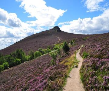 Path on Bennachie.JPG