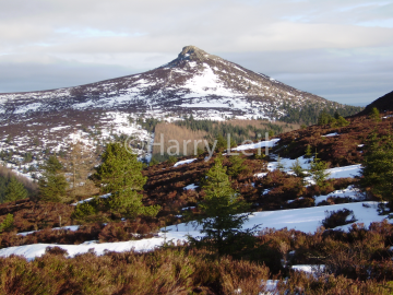 Wintry Bennachie.png